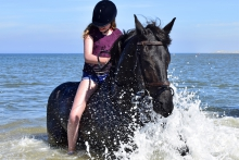 paardrijden terschelling