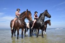 paardrijden op Terschelling